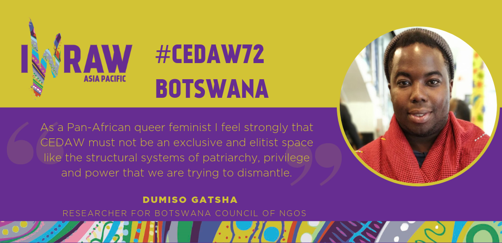 Go There to Come Back: Reflections from Botswana's CEDAW Review